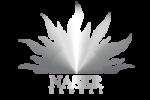 NASER Logo